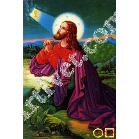 Наличен Диамантен гоблен ИСУС СЕ МОЛИ В ГЕТСИМАНСКАТА ГРАДИНА: Размер и Вид - Кръгли диаманти 45х30